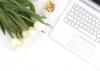 Consejos, tutoriales y monetización para bloggers Avatar
